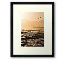 Whitby Gull Framed Print