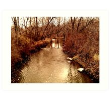 Creek Bank Art Print