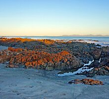 Waratah Bay Evening by Harry Oldmeadow
