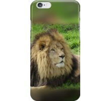 Male Black Lion iPhone Case/Skin