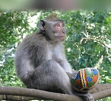 Innocent Monkey with Stolen Ball by Keith Richardson