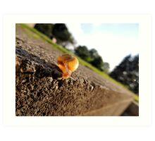 Oh Hai Mr. Snail Art Print