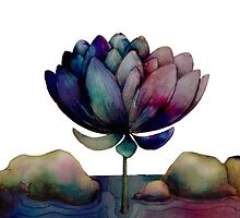 rainbow lotus flower by © Karin  Taylor