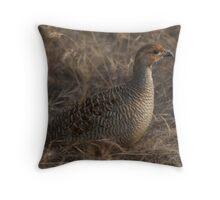 Partridge in grass Throw Pillow