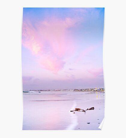Sunset Kelp Poster