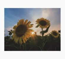 Sunflower and sunset Kids Clothes