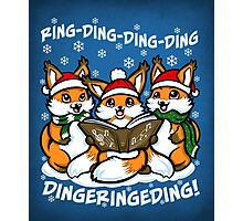 What does the Fox Sing - Print Photographic Print