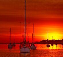 """Tangerine Dream"" by Phil Thomson IPA"
