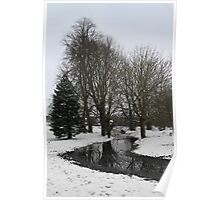 Trees in snow - Goldwell Park, Newbury Poster