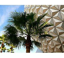 Golf Palm Photographic Print