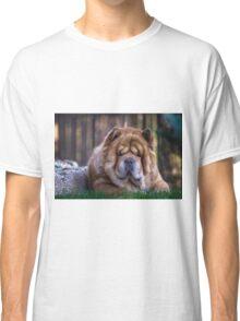 Chow dog portrait Classic T-Shirt