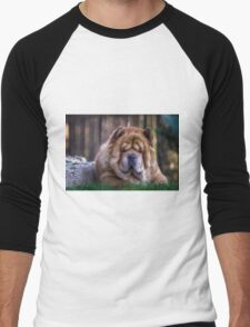 Chow dog portrait Men's Baseball ¾ T-Shirt