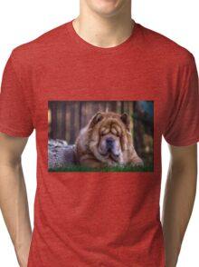 Chow dog portrait Tri-blend T-Shirt