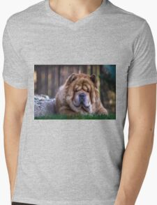Chow dog portrait Mens V-Neck T-Shirt