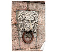 stone lion Poster