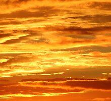 Golden Sky by Adam Wain