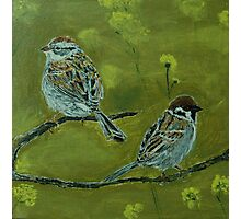 Sparrows in a mustard field! Photographic Print