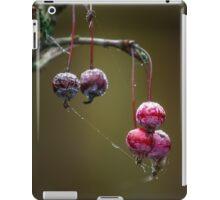 Red Balls iPad Case/Skin