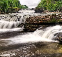 Lower falls - Aysgarth  by Guy  Berresford