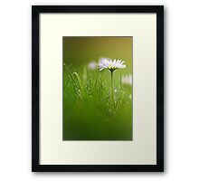 Just soak in the grass.... Framed Print