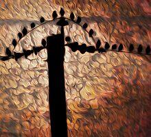 Birds on a Wire by nicopics