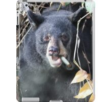 Smokey the Bear iPad Case/Skin