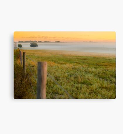 Morning Field of Fog Canvas Print