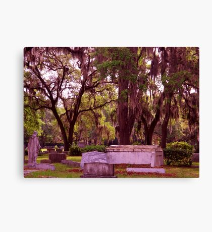 History of the Rested Artistic Photographer by Shannon Sears Canvas Print