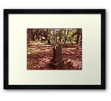 Wistful Thoughts Artistic Photograph by Shannon Sears Framed Print
