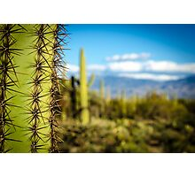 Tuscon View Photographic Print