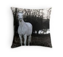 Looking for a Friend Throw Pillow