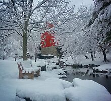 Winter Wonderland by picsbytabitha
