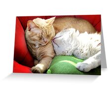 Warmth and Love for the Holidays Greeting Card
