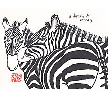 Dazzle of Zebras (animal groups series) Photographic Print