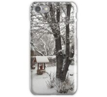 Chinese Winter iPhone Case/Skin