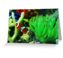 Finding Nemo! Greeting Card