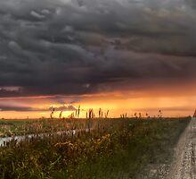 Everglades sunset by Kyle Irizarry