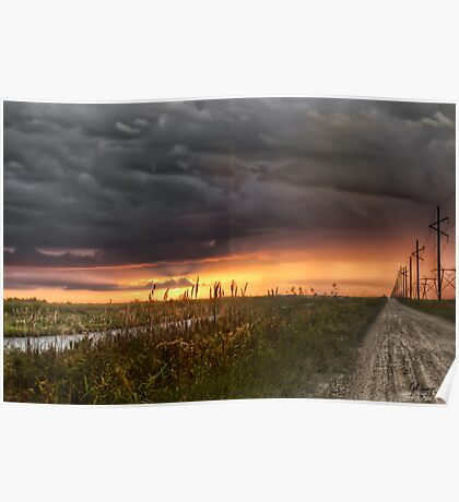 Everglades sunset Poster