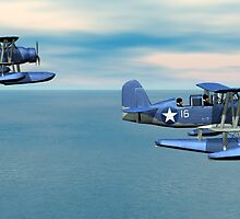 Curtiss SOC Seagull by Walter Colvin