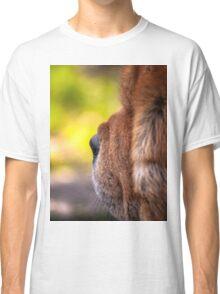 Chow-chow portrait Classic T-Shirt