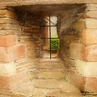 Window in the Bishops Palace by kalaryder
