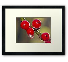 Winter Sparkle Framed Print