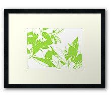 syzygium silhouette  Framed Print