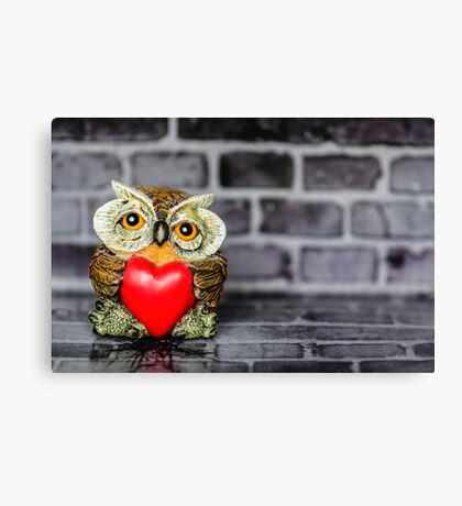 Owl Love Canvas Print
