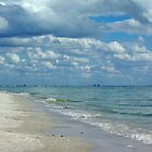 Sanibel Beach by Karen Checca