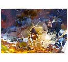 Stained-Glass Sea Creatures  Poster