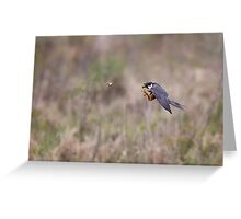 Hobby hunting Mayfly Greeting Card