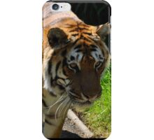 Walk This Way, Tiger iPhone Case/Skin