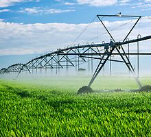 Irrigation equipment on farm field by Elena Elisseeva