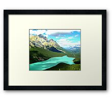 Too Beautiful for Words Framed Print